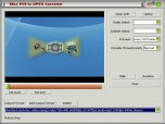 Wise DVD to MPEG Converter Screenshot
