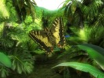 Butterfly Jungle 3D Screensaver