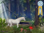 Enchanted Forest - 3D Screen Saver