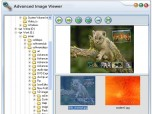 SWD Image Viewer