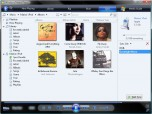 iPod plug-in for Windows Media Player