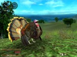 Hunting Unlimited 2008 Screenshot
