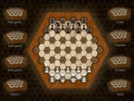 Hexagonal Chess