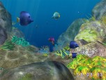 3D Coral World ScreenSaver Screenshot