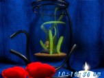 Dream Aquarium 3D Screensaver Screenshot