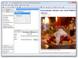tlDatabase Data Editing Software Screenshot