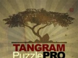Tangram Puzzle Pro: Secret Garden Screenshot